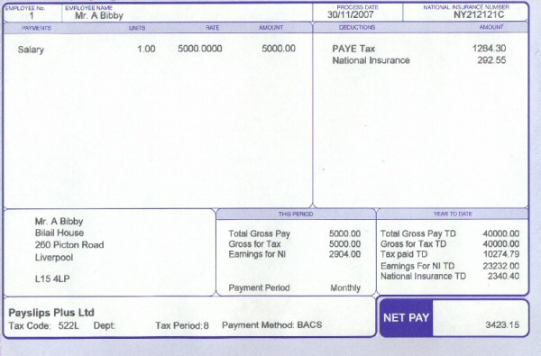 Nice Plus White Payslips Within Blank Wage Slips