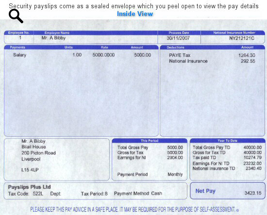 Plus Security Blue Payslips  Monthly Pay Slip